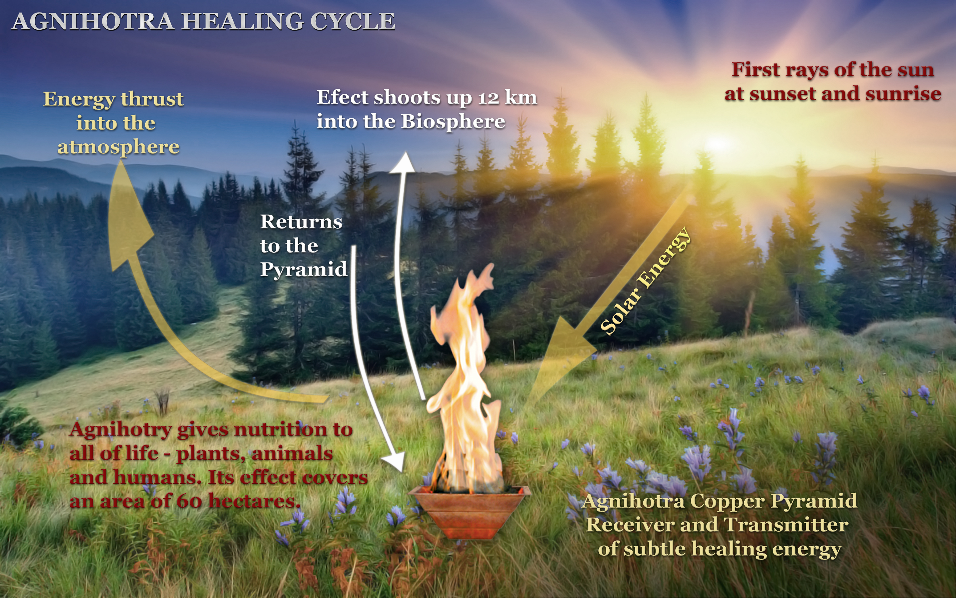 EFFECTS OF AGNIHOTRA