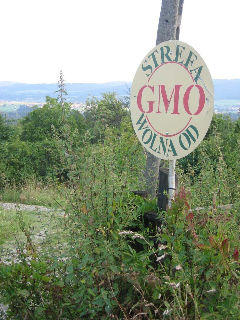 GMO Free Zone_12222422516_l