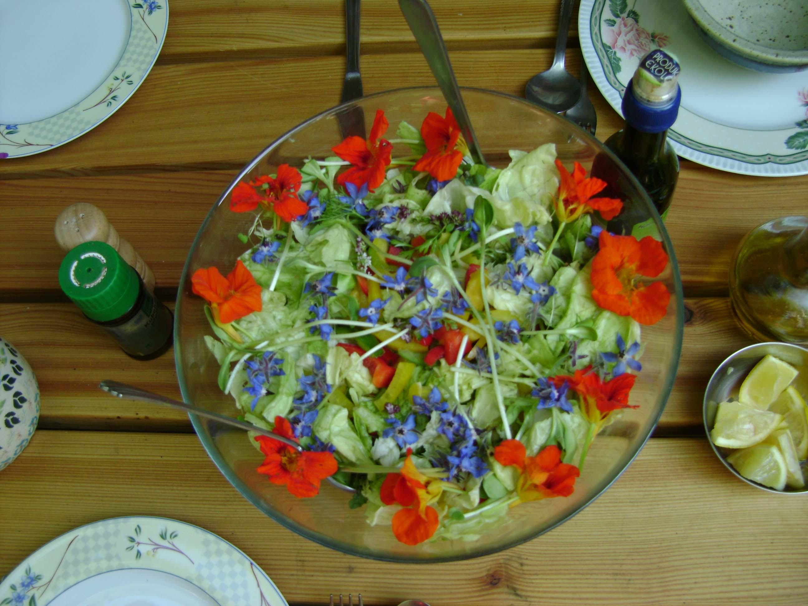 Healthy organic food 12221420545