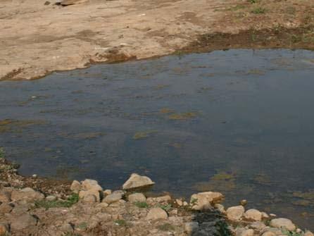Wpływ Agnihotry na wodę